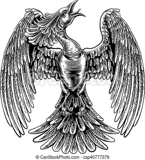 Phoenix Fire Bird in Vintage Woodcut Style - csp40777379