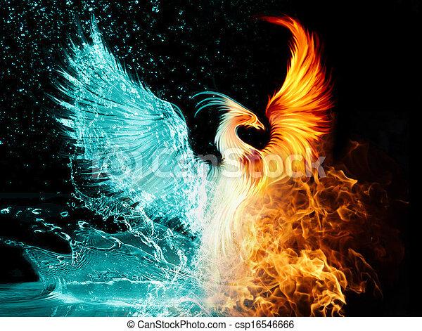 phoenix - csp16546666