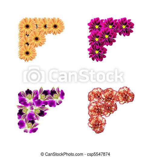 photo, fleurs, coins - csp5547874