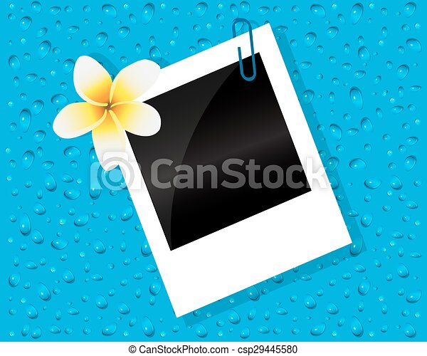 Photo of the flower and drops - csp29445580