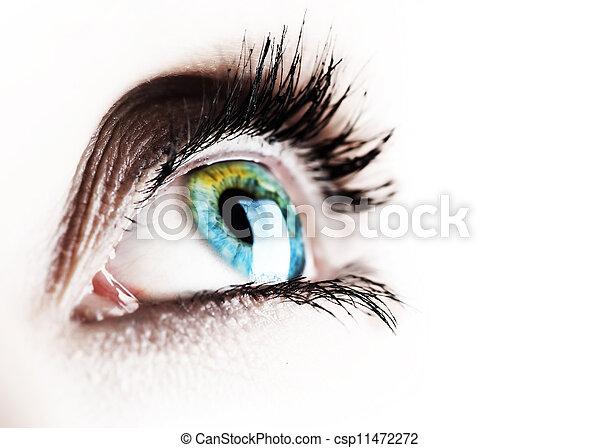 piękny, biały, oko, odizolowany - csp11472272