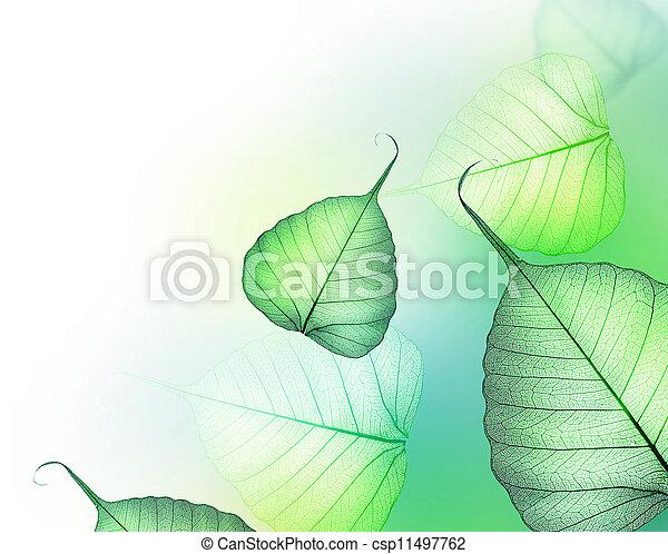 piękny, border., liście, zielony, kwiatowy zamiar - csp11497762