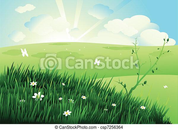 piękny, krajobraz, natura - csp7256364