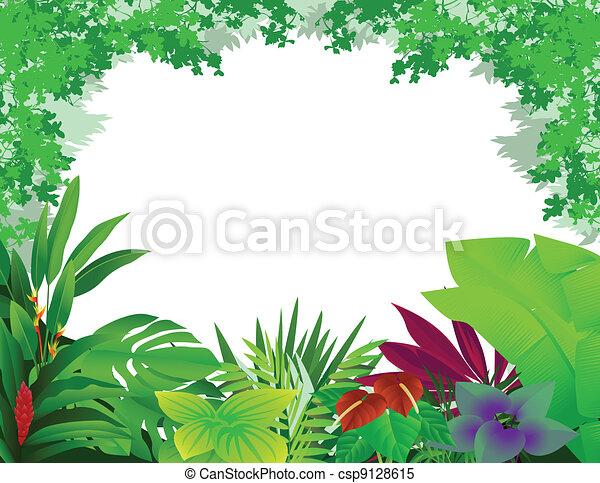 piękny, las, tło - csp9128615