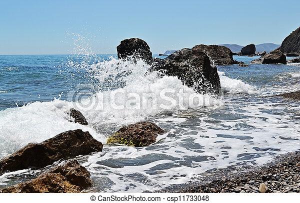piękny, motyw morski - csp11733048
