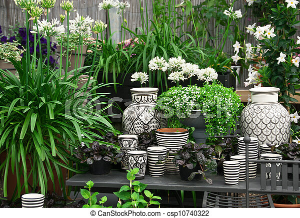 piękny, rośliny, kwiaciarnia, ceramika - csp10740322