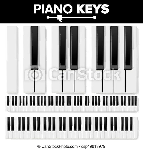 Piano Keyboard Vector Realistic Isolated Illustration Musical Key Top View Pad