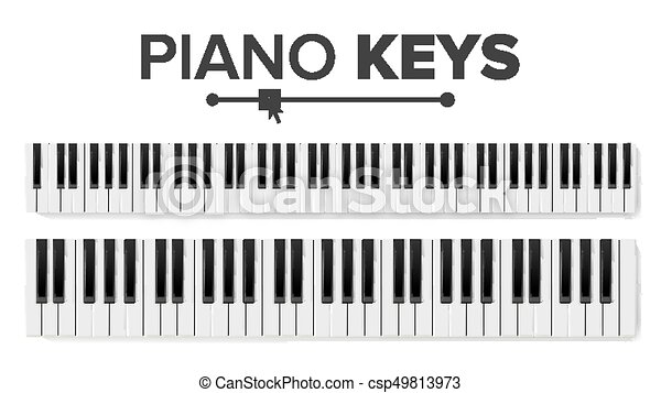 Piano Keyboards Vector Isolated Illustration Top View Keyboard Pad