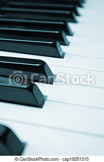 Piano Keys - csp10251315