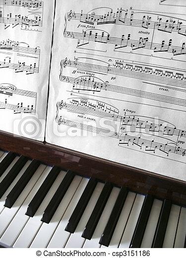 Piano Keys - csp3151186