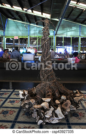 pianta, pepe, vendita, fijian, radici, mercato - csp43927335