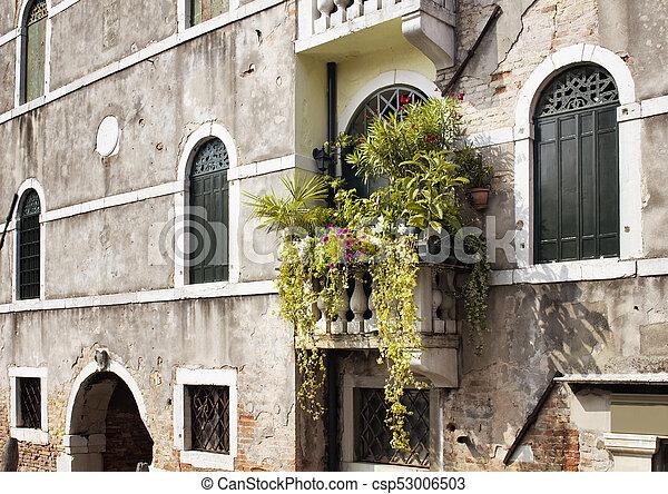 piante, b, balcone, molti, storico, fiori, vecchio, tipico - csp53006503