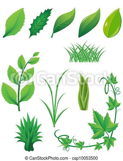 piante, foglie, set, verde, icona - csp10053500