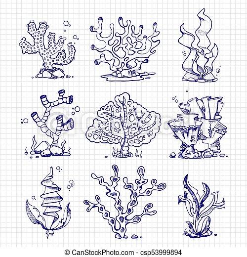 Piante Subacqueo Ballpoint Alghe Coralli Penna Disegno Piante