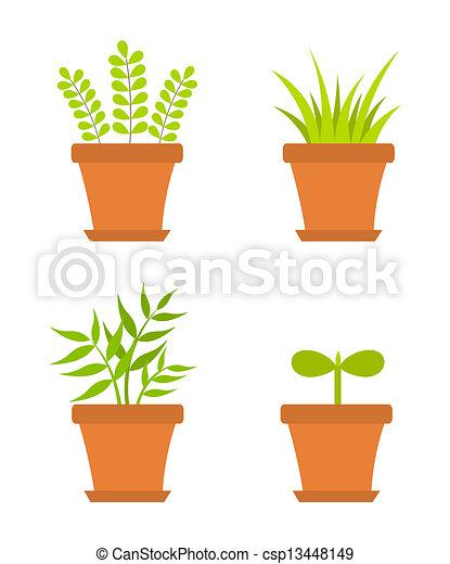 piante, vaso - csp13448149