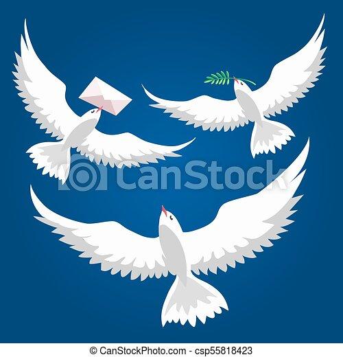 piccioni, volare, set - csp55818423