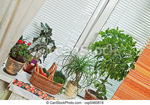 Picnic basket and flowerpots on window-sill - csp5460816