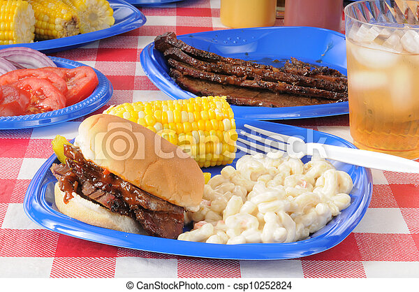 Picnic lunch with barbecue beef - csp10252824