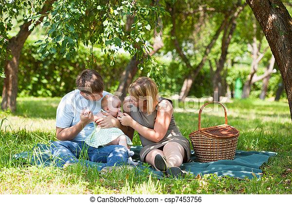 picnic, parque, teniendo, familia  - csp7453756