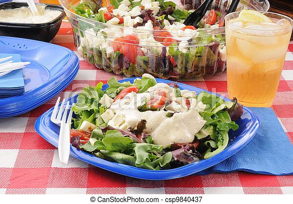 Picnic salad - csp9840437