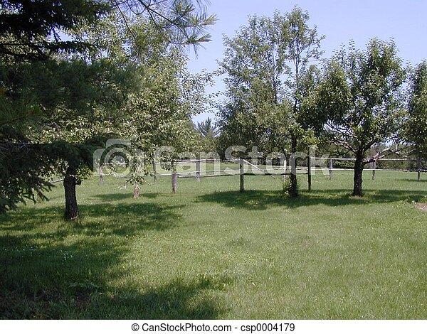 Picnic spot - csp0004179