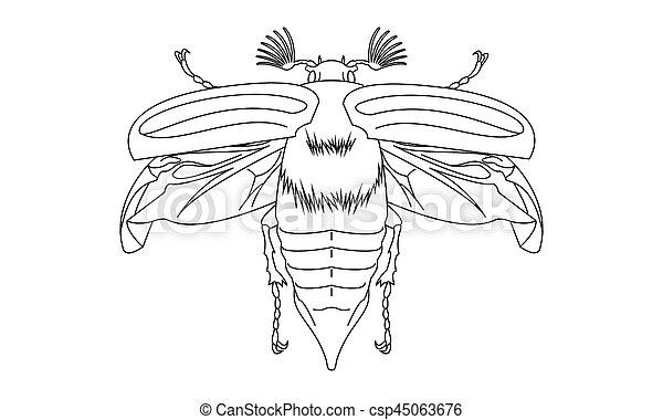 Pictogram - Chafer, Cockchafer, Maybug, May beetle - Object, Icon, Symbol - csp45063676
