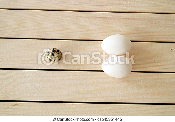 pictures of the quail's eggs in the nest, chicken and quail eggs, pictures of the most beautiful white chicken eggs in the ground - csp45351445