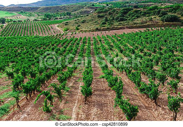 Picturesque landscape of Spain - csp42810899