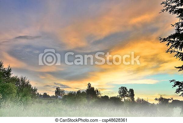 Picturesque summer sunrise landscape with morning fog - csp48628361