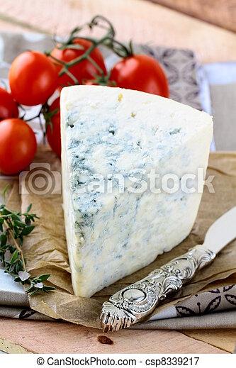 piece of blue cheese, tomato - csp8339217