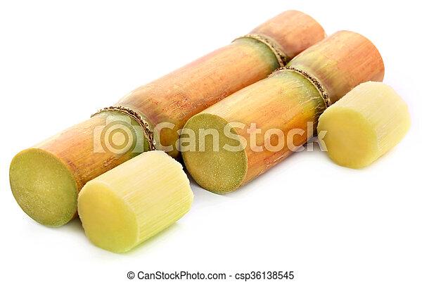 Pieces of sugarcane - csp36138545