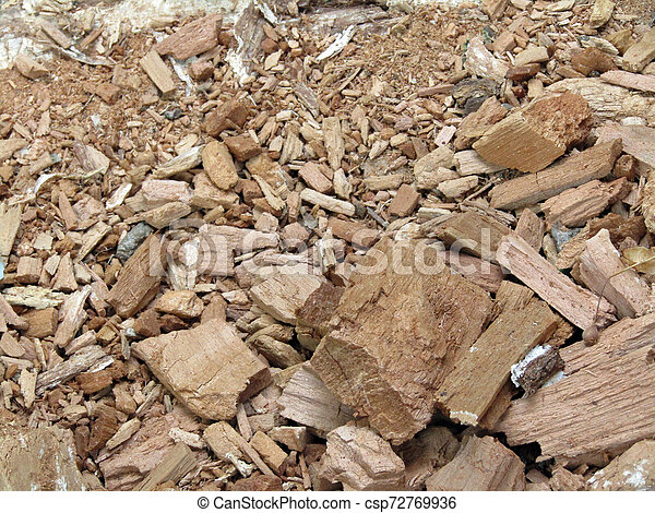 pieces of wood lying on the ground. Texture stock photo - csp72769936