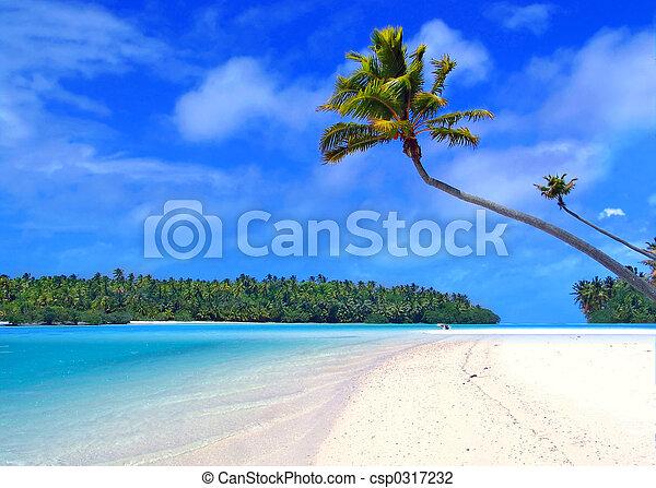 pied, île, une - csp0317232