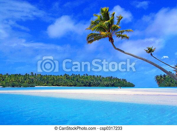 pied, île, une - csp0317233