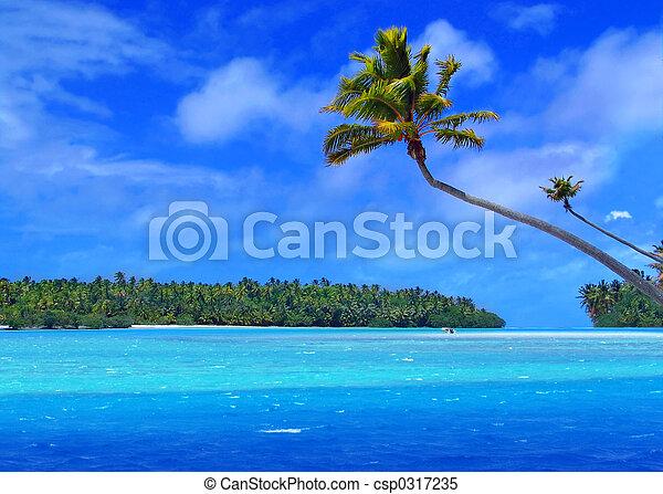 piede, isola, uno - csp0317235