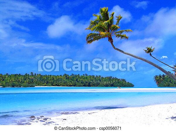 piede, isola, uno - csp0056071