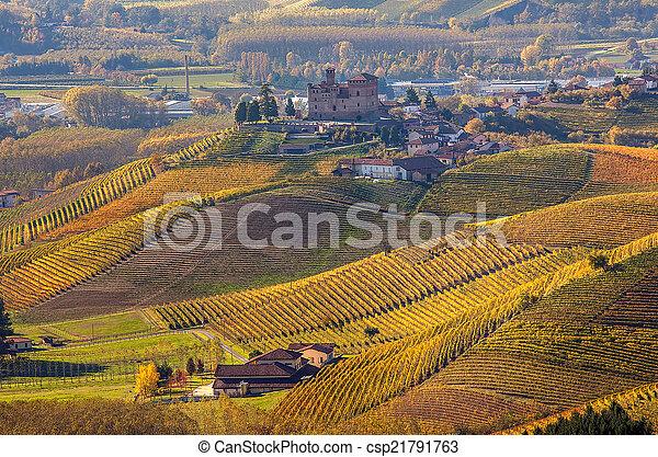 Autumnale Hügel von Piedmont, Italien. - csp21791763