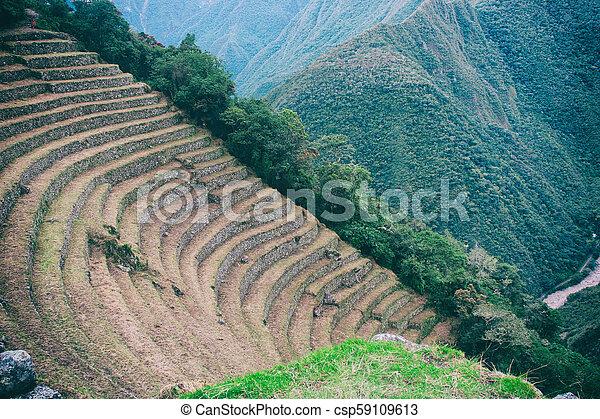 Piedra Antiguo Terraces Inca Rastro Agricultura Peru