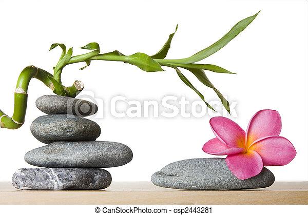Pico de piedra y flor de frangipani con bambú en espiral - csp2443281
