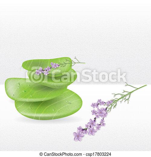 Ilustracin vectorial de piedras planta jade lavanda realista