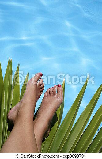 pieds, exotique, piscine - csp0698731