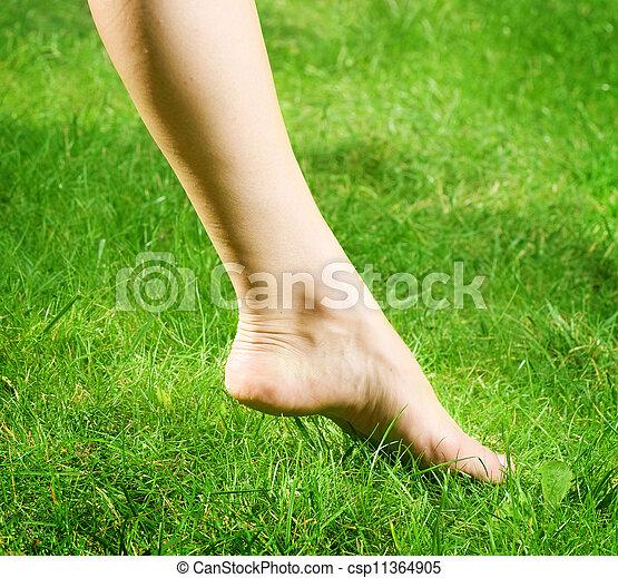 pieds, nu, femme, herbe verte - csp11364905