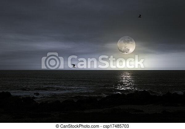 pieno, spiaggia, luna - csp17485703