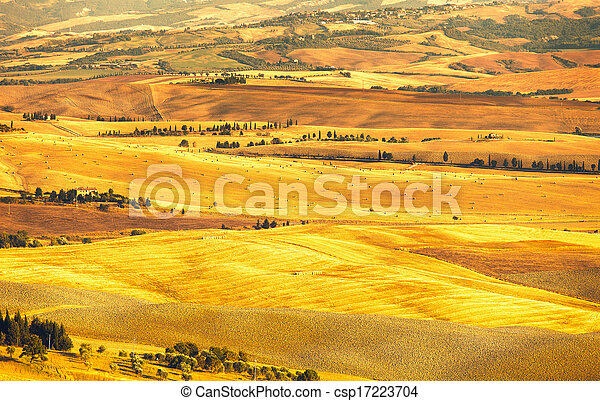 Pienza Val d Orcia, rural sunset landscape. Countryside farm and green fields. Tuscany, Italy, Europe. - csp17223704