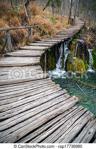 Pier over a lake in forest - csp17736980