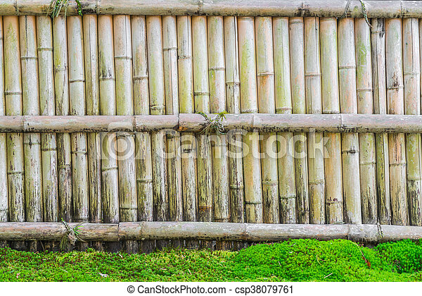 pierre, feuilles vertes, barrière, bambou.