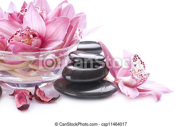 pierre, masage, spa - csp11464017