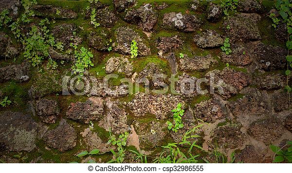 pierre vieux mur texture vert mousse couvert pierre images de stock rechercher des. Black Bedroom Furniture Sets. Home Design Ideas