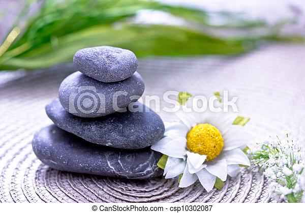 pierres, wellness/beauty, spa, fleurs, représenter, soin - csp10302087