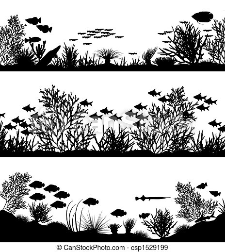 pierwsze plany, koral - csp1529199